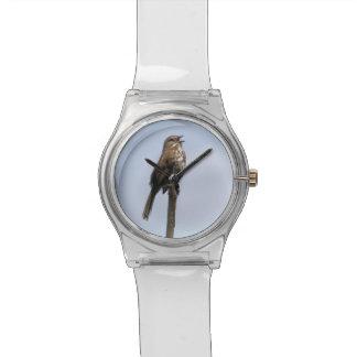 La canción del gorrión reloj