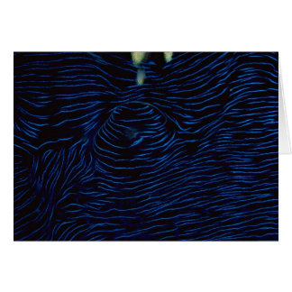 La capa de una almeja del Tridacna Tarjeta De Felicitación