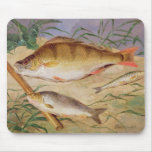La captura de un pescador de los pescados gruesos  alfombrilla de ratón