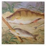 La captura de un pescador de los pescados gruesos  azulejo cuadrado grande