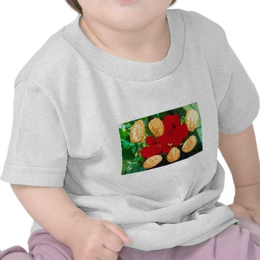 La capuchina roja siembra (las flores del majus camisetas