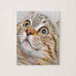 La cara del gatito puzzle