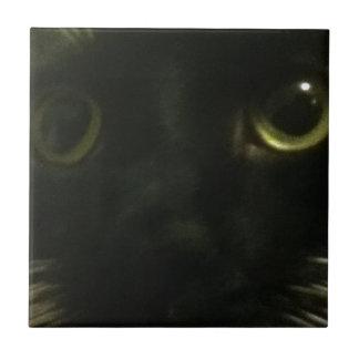 La cara del gato azulejo cuadrado pequeño