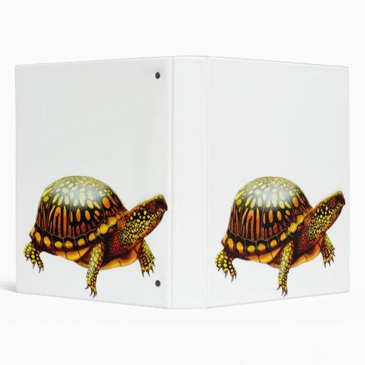 La carpeta de la tortuga de caja
