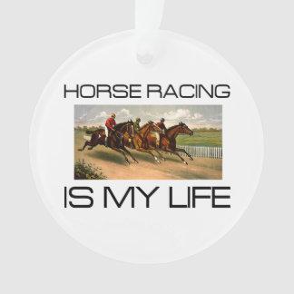 La carrera de caballos SUPERIOR es mi vida
