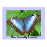 La casa de la mariposa tarjeta postal