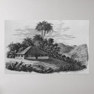 La casa de un plantador en el Brasil Póster