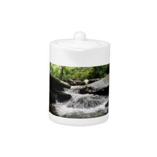 La cascada conecta en cascada Great Smoky