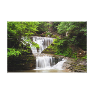 La cascada en suero cae parque de estado, Nueva Impresiones En Lienzo Estiradas