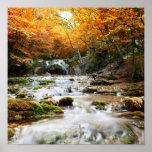 La cascada hermosa en el bosque, otoño posters