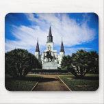 La catedral de St. Louis Mousepad