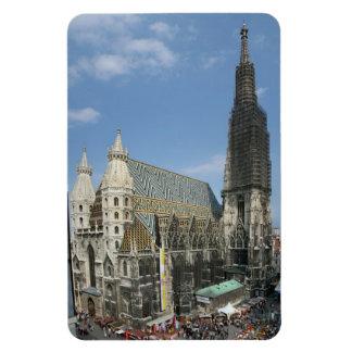 La catedral de St Stephen, Viena Austria Rectangle Magnet