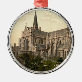 La catedral Dublín Irlanda de St Patrick Adorno Redondo Plateado