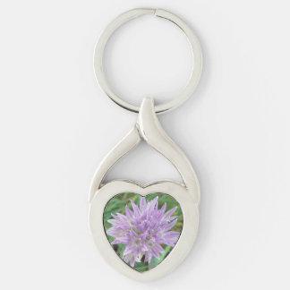 La cebolleta rosada florece el allium llavero plateado en forma de corazón