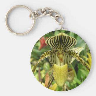 La cebra amarilla raya la orquídea llaveros