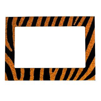 La cebra anaranjada del brillo raya el marco magné foto de imanes