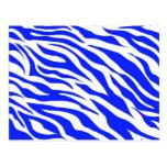La cebra blanca azul de moda raya estampados de an tarjetas postales