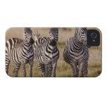 La cebra de Burchell, burchellii del Equus, Masai iPhone 4 Case-Mate Funda