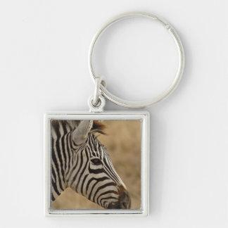 La cebra de Burchell, burchellii del Equus, Ngoron Llaveros Personalizados