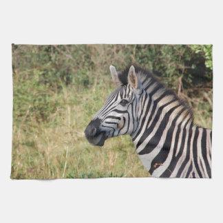 La cebra raya el destino africano animal del safar toalla de mano
