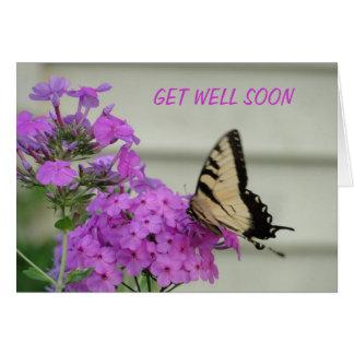 La cebra Swallowtail, consigue bien Tarjeton