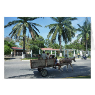 la ceiba cart card