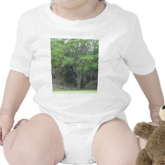 La Ceiba Tree at Las Ruinas de Copan Tshirt