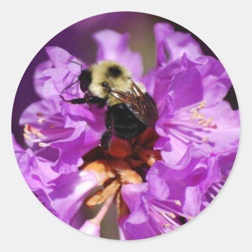 La cena manosea la abeja pegatina redonda