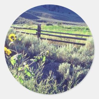 la cerca de carril sabia amarilla del cepillo y etiqueta redonda