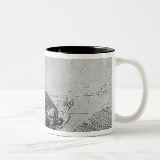 La cerda, 1643 taza de café