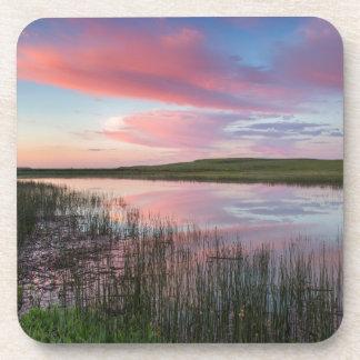 La charca de la pradera refleja las nubes posavasos