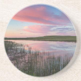 La charca de la pradera refleja las nubes posavasos manualidades