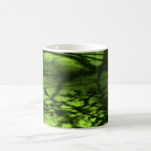 La charca verde sombrea la taza de café