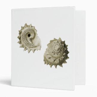 "La circular vio Shell Carpeta 1"""
