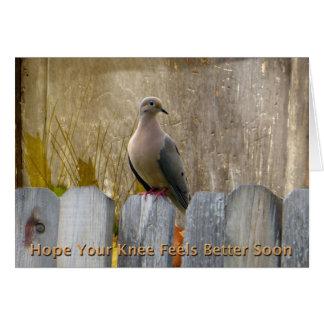 La cirugía de la rodilla consigue pronto la paloma tarjeta de felicitación