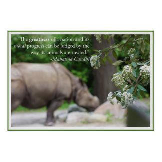 La cita de Gandhi, trata los animales bien Poster