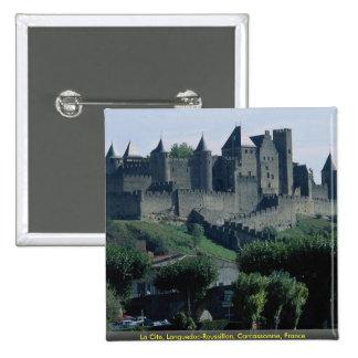 La Cite Languedoc-Roussillon Carcassonne France Pin
