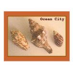 La ciudad del océano descasca la postal