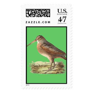 La coalla americana(menor de Rusticola) Sellos Postales