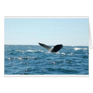La cola de la ballena tarjeta de felicitación