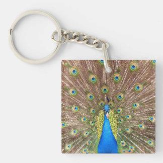 La cola de milano azul hermosa del pájaro del pavo llavero cuadrado acrílico a doble cara