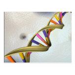 La colección de la DNA Tarjetas Postales
