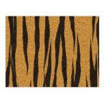 La colección de la piel - tigre postal