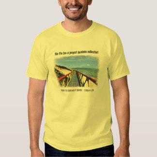 La colección de verano del proyecto del árbol de camisas