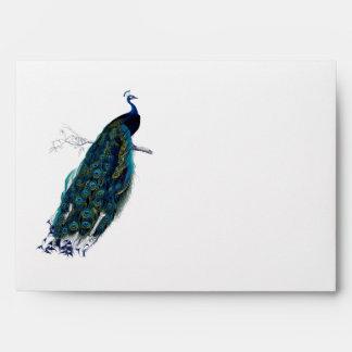 La colección del pavo real sobres