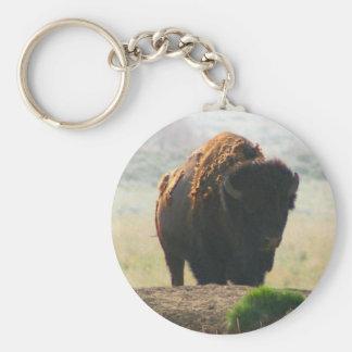 La colección II del búfalo Llaveros Personalizados