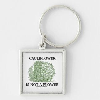 La coliflor no es una flor (la materia en que llavero cuadrado plateado