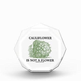 La coliflor no es una flor (la materia en que