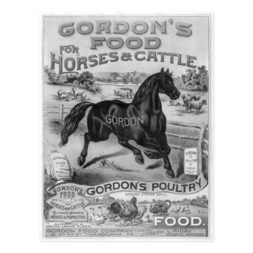 La comida 1885 de Gordon Postal