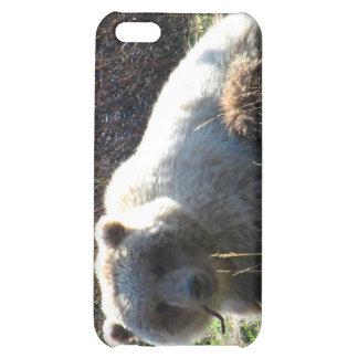 La comida campestre del oso de peluche; Personaliz